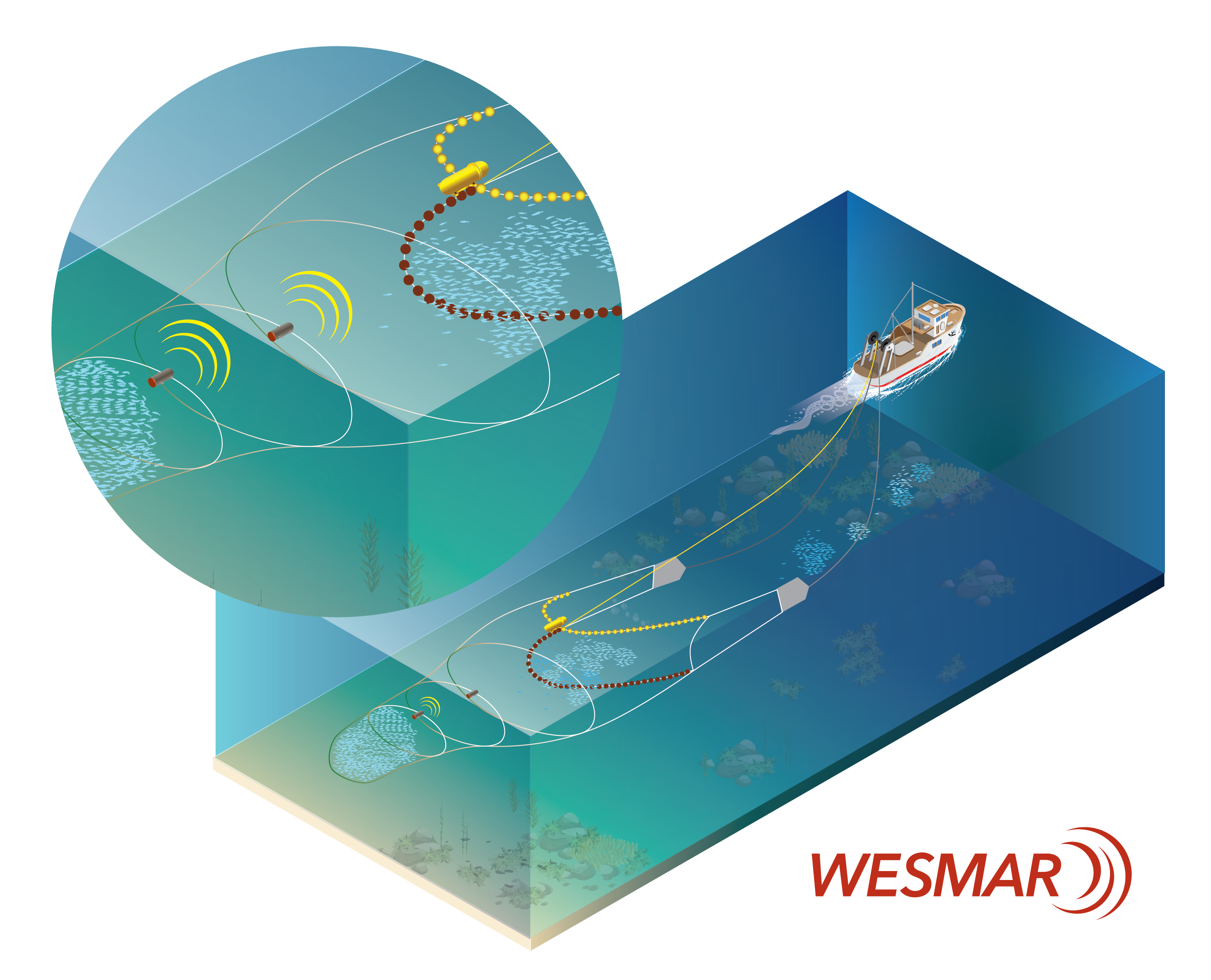 Catch Sensor Placement on Trawl Net